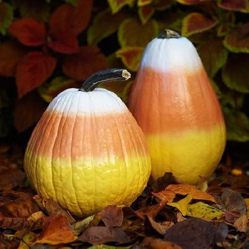 Candy Corn Painted Pumpkins Design Connection Inc Kansas City Interior Design Blog
