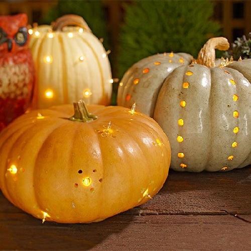 Light Bright Pumpkins Design Connection Inc Kansas City Interior Design Blog